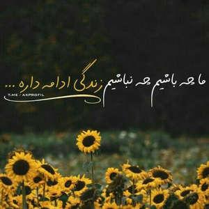 سید تقی میری